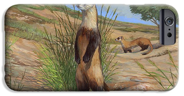 Black-footed Ferret IPhone Case by ACE Coinage painting by Michael Rothman