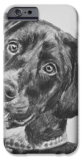 Black Lab Puppy Charcoal Sketch IPhone Case by Kate Sumners