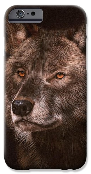 Black Wolf IPhone Case by David Stribbling