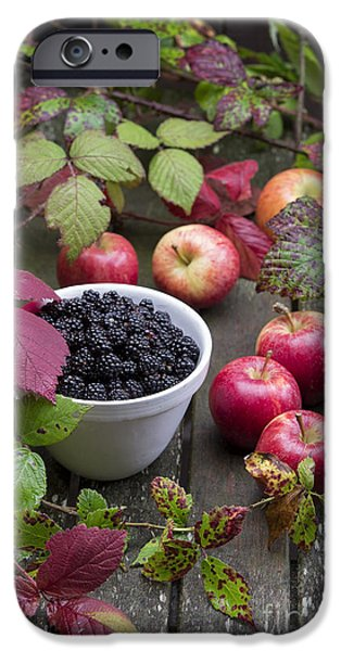 Blackberry And Apple IPhone Case by Tim Gainey