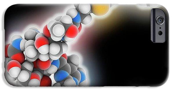 Bleomycin Drug Molecule IPhone Case by Laguna Design