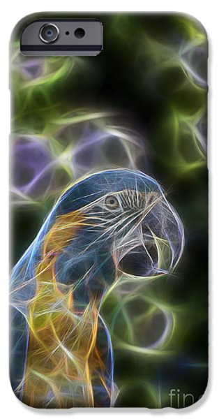 Blue And Gold Macaw  IPhone 6s Case by Douglas Barnard