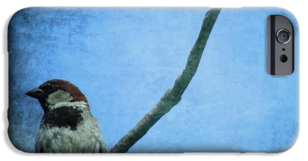 Sparrow On Blue IPhone 6s Case by Dan Sproul