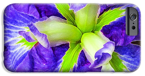 Boothbay Violet With Chartreuse IPhone Case by Bill Caldwell -        ABeautifulSky Photography