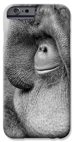 Bornean Orangutan V IPhone 6s Case by Lourry Legarde