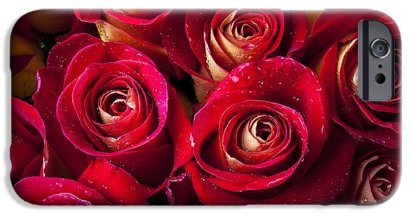 Boutique Roses IPhone Case by Garry Gay