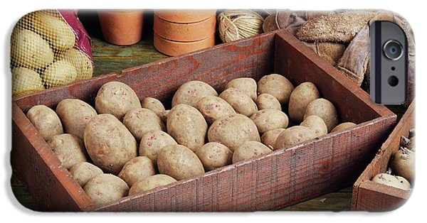 Box Of Potatoes IPhone 6s Case by Geoff Kidd