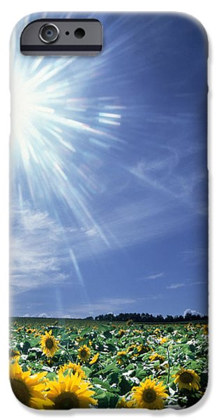 Bright Burst Of White Light Above Field IPhone Case by Panoramic Images