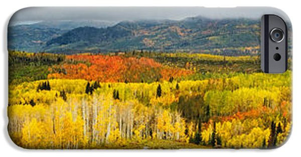 Buffalo Pass Steamboat Springs Co IPhone Case by Teri Virbickis