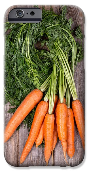 Bunched Carrots IPhone 6s Case by Jane Rix