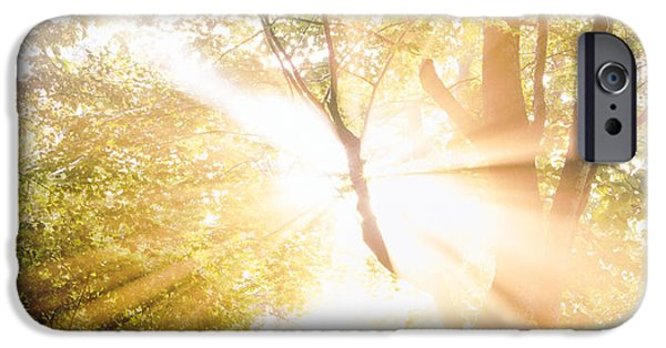 Burst Of White Light Through Green Trees IPhone Case by Panoramic Images