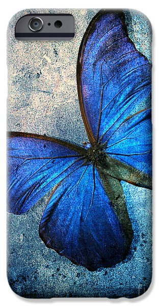 Butterfly IPhone Case by Mark Ashkenazi