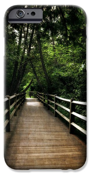 Cedar Pathway 2.0 IPhone Case by Michelle Calkins