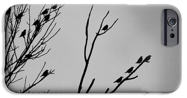 Changing Of Seasons IPhone Case by Dan Sproul