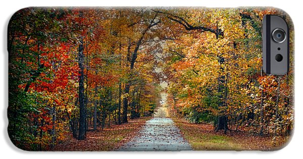 Changing Season - Autumn Landscape IPhone Case by Jai Johnson
