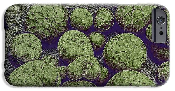 Cherimoya IPhone Case by David Pantuso
