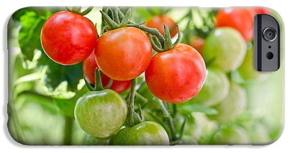 Cherry Tomatoes IPhone 6s Case by Delphimages Photo Creations