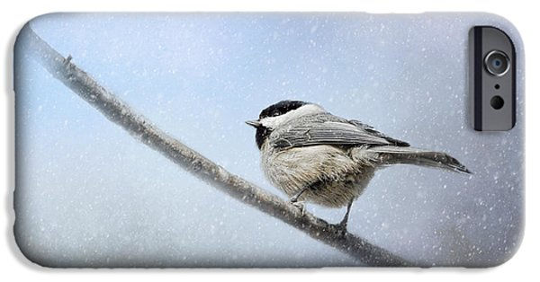 Chickadee In The Snow IPhone 6s Case by Jai Johnson