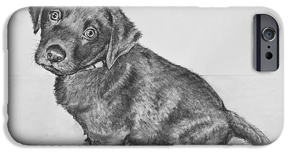 Chocolate Lab Puppy Artwork IPhone Case by Kate Sumners