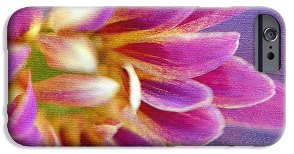 Chrysanthemum Painting IPhone Case by Irina Wardas