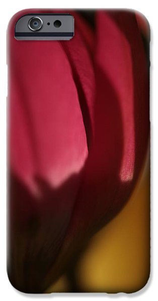 Claret IPhone Case by Connie Handscomb