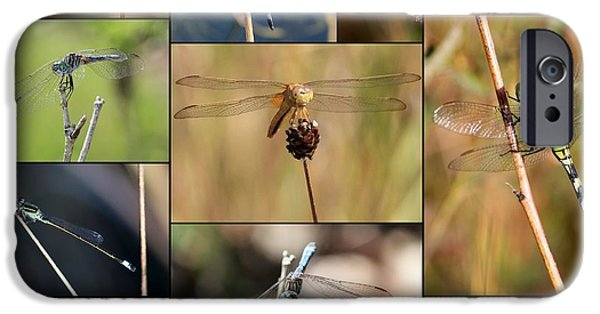 Collage Marsh Life IPhone 6s Case by Carol Groenen