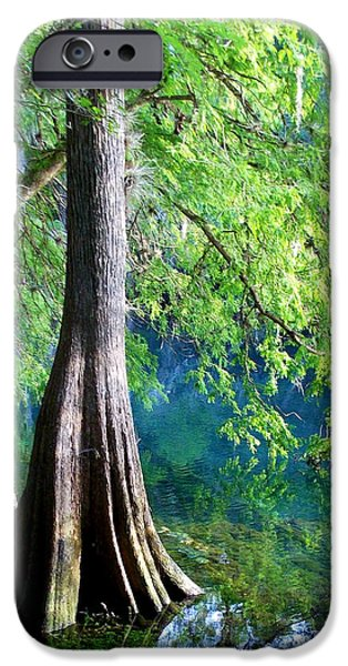Color Of Summer IPhone Case by Sheri McLeroy