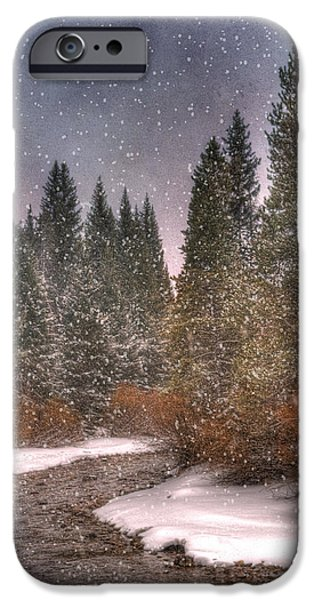 Colours Of Winter IPhone Case by Juli Scalzi