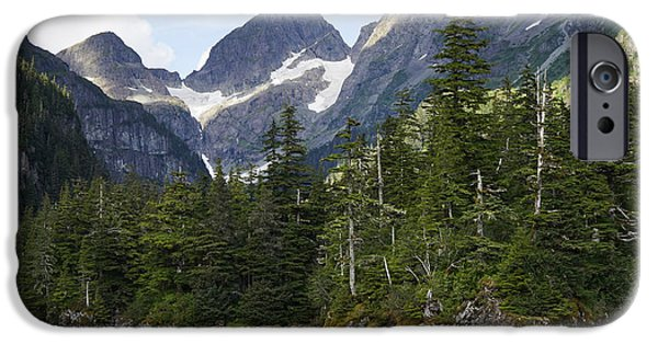 Conifer Forest Inside Passage Prince IPhone Case by Hiroya Minakuchi