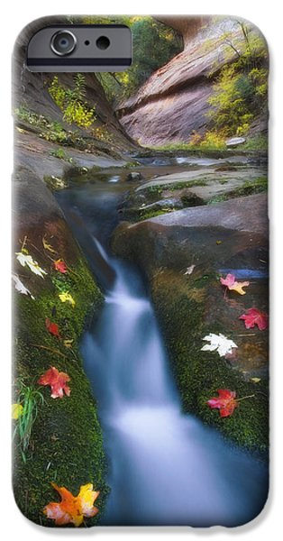 Cut Into Autumn IPhone Case by Peter Coskun