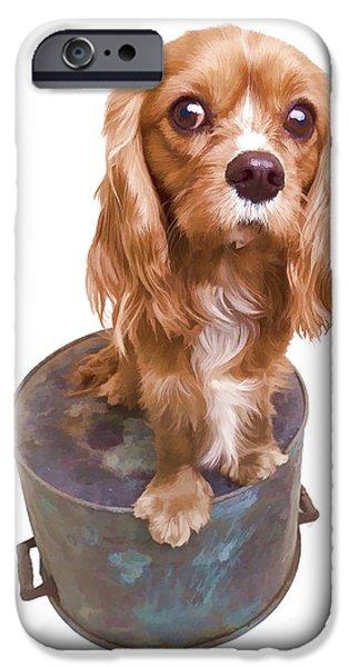 Cute Puppy Card IPhone Case by Edward Fielding