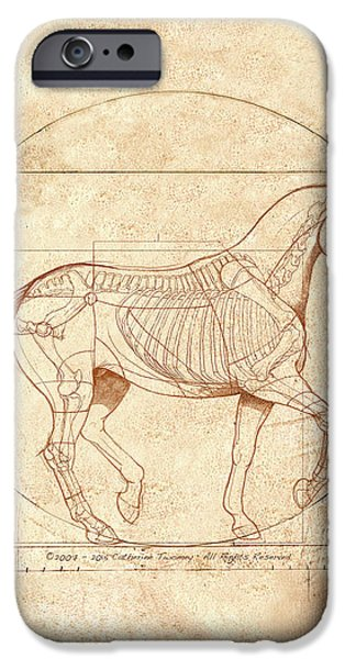 da Vinci Horse in Piaffe IPhone Case by Catherine Twomey