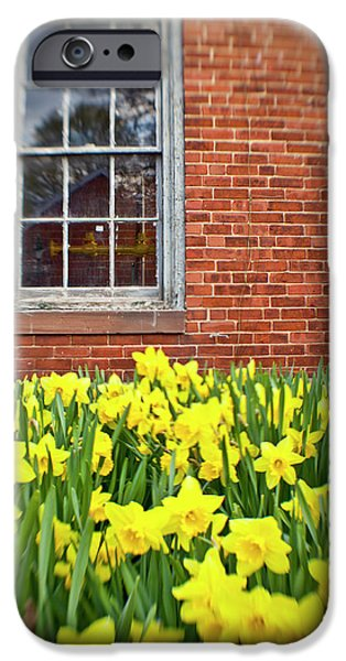 Daffodils In Portsmouth, New Hampshire IPhone Case by Jerry and Marcy Monkman