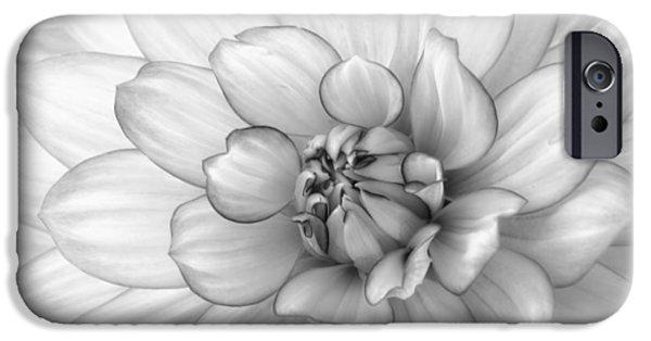 Dahlia Flower Black And White IPhone Case by Kim Hojnacki