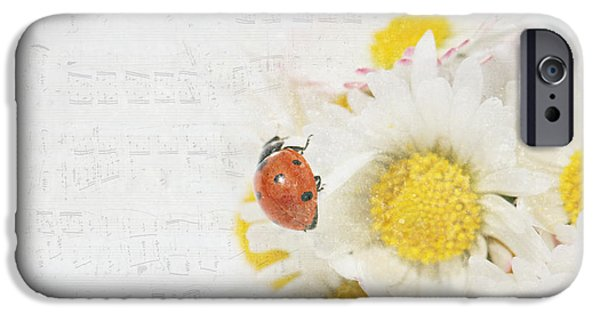 Daisies And Ladybug IPhone Case by Heike Hultsch