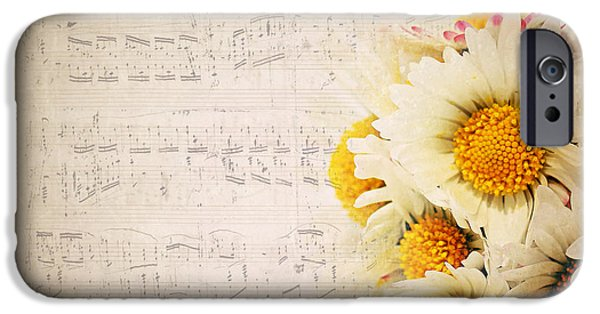 Daisies IPhone Case by Heike Hultsch