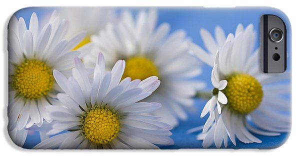 Daisies On Blue IPhone Case by Jan Bickerton