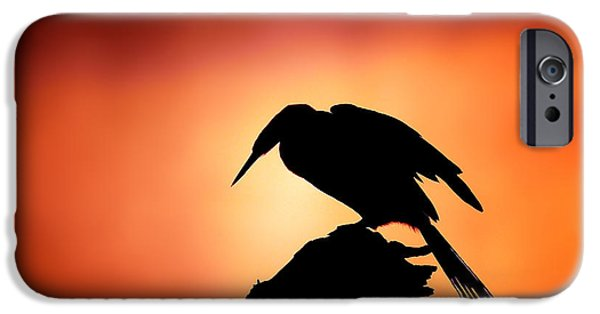 Darter Silhouette With Misty Sunrise IPhone 6s Case by Johan Swanepoel