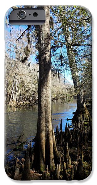 December Breeze 1 IPhone Case by Sheri McLeroy