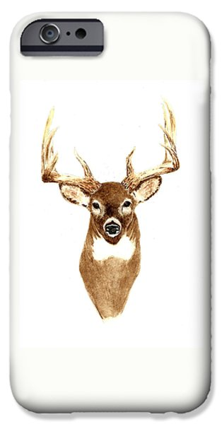 Deer - Front View IPhone Case by Michael Vigliotti