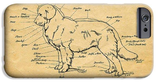Doggy Diagram IPhone Case by Tom Mc Nemar