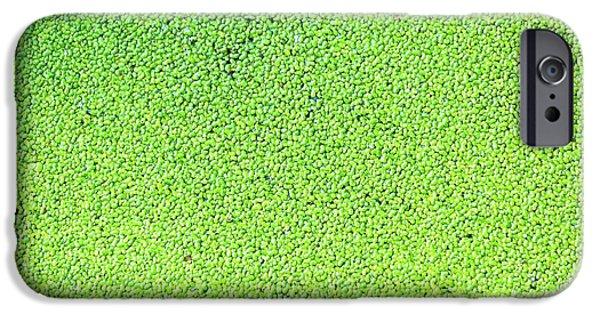 Duckweed IPhone Case by Wladimir Bulgar