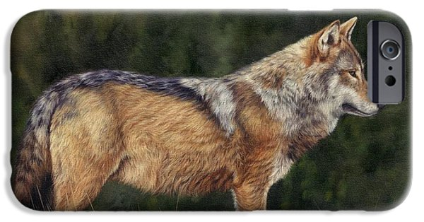 European Grey Wolf IPhone Case by David Stribbling