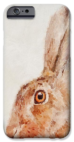 European Hare Watercolor IPhone Case by John Edwards