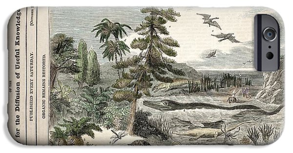 Extinct Animals, Penny Magazine, 1833 IPhone Case by Paul D. Stewart
