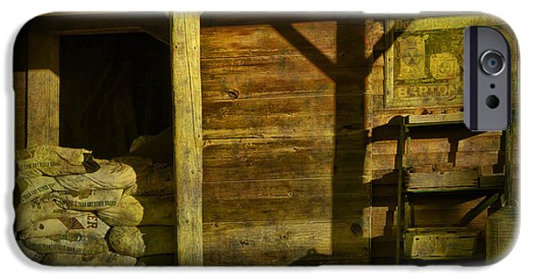 Feed Mill Store IPhone Case by Randall Nyhof