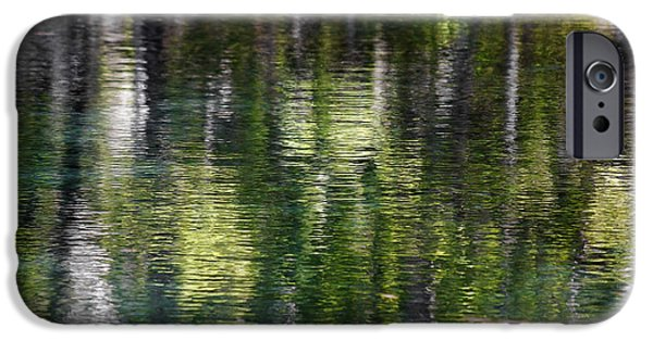 Florida Silver Springs River IPhone Case by Christine Till