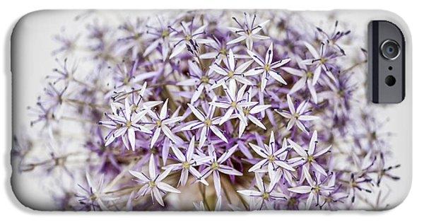 Flowering Onion Flower IPhone Case by Elena Elisseeva