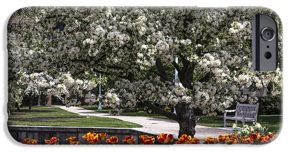 Flowers And Bench At Michigan State University  IPhone 6s Case by John McGraw
