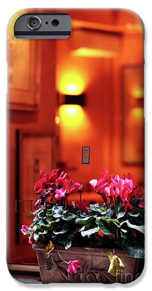 Flowers On The Ledge IPhone Case by John Rizzuto